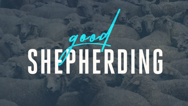 Good Shepherding - Wandering Sheep Image